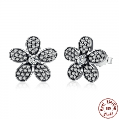 Original 925 Sterling Silver Dazzling Daisy Flower Stud Earrings for Women Jewelry PAS434
