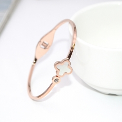 Stainless Steel Bangle ZC-0225B