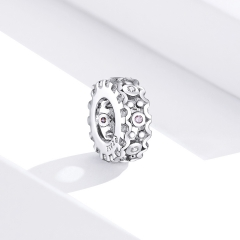 925 sterling silver luxury charms  BSC271