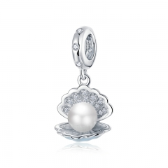 925 sterling silver luxury charms  BSC242